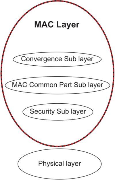 Архитектура протокола IEEE 802.16 m