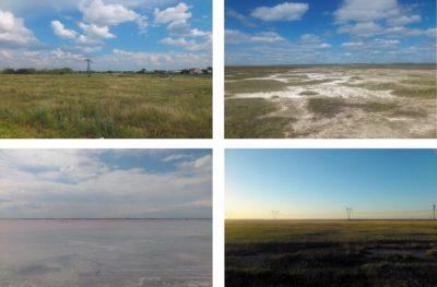 Окрестности Славгорода, солончаки неподалеку от Бурлы, Бурлинское озеро, граница Волчихинского и Романовского районов