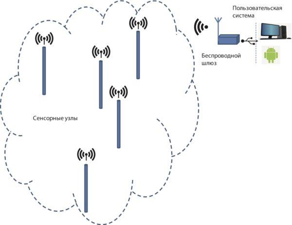 Общий вид системы сбора данных мониторинга температуры почвенного покрова