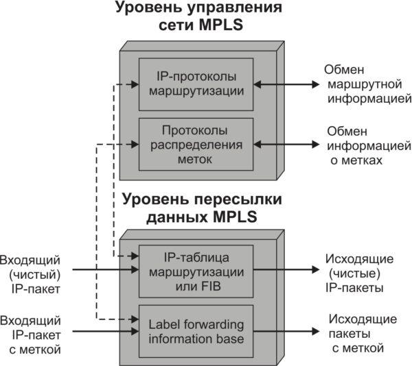 Уровни управления и пересылки данных технологии MPLS