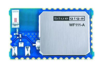Внешний вид модуля WF111-A