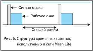 Структура временных пакетов, используемых в сети Mesh Lite