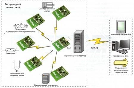 Пример структуры сети при использовании модулей PWD-433 совместно с программой хоста